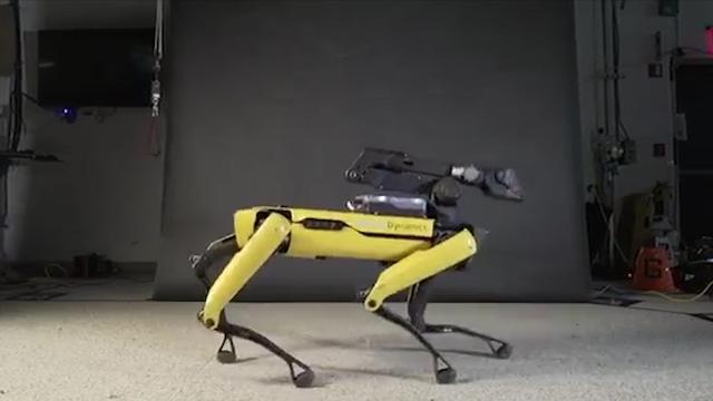 Robothond doet moonwalk op nummer Uptown Funk