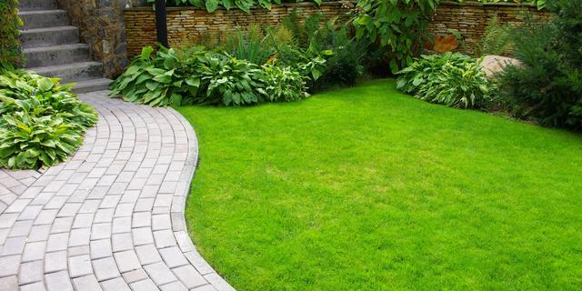 Gemeente wil met maatregelen tuinen in Westerpark-Zuid vergroenen