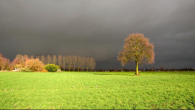 Weerbericht: Buien trekken vanuit het westen over Nederland