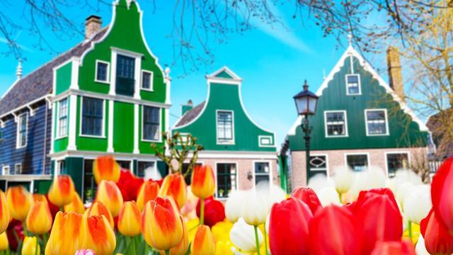 Drie Nederlandse aandelen met stijgingspotentieel