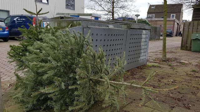 Extra inleverpunten kerstbomen