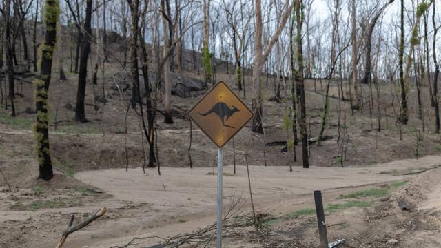Australië investeert miljoenen in toerisme na verwoestende bosbranden