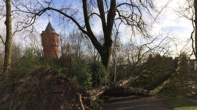 Storm bezorgt Breda handenvol werk