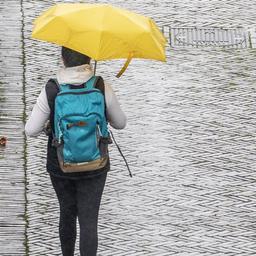 Grauwe en regenachtige dagen, krijgen we nog wel zomers weer?