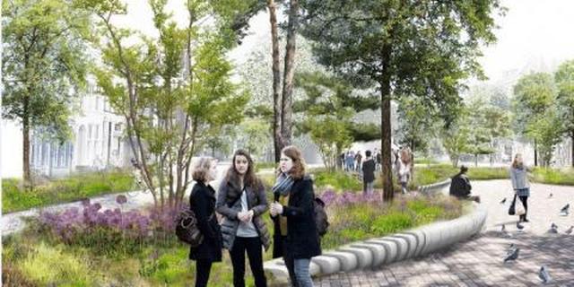 Gemeente Groningen krijgt 1 miljoen euro voor vergroening Damsterplein