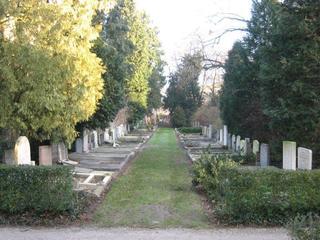 Drie begraafplaatsen waren al in beeld gebracht, maar de resterende vijf zijn nu ook online toegevoegd.