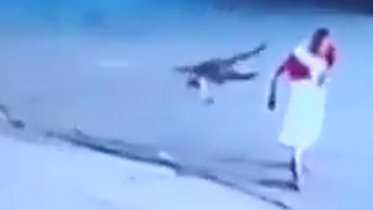 Agressieve aap terroriseert bewoners Indiaas dorpje