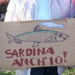'Sardientjes'-protest in Rome tegen partijleider Matteo Salvini