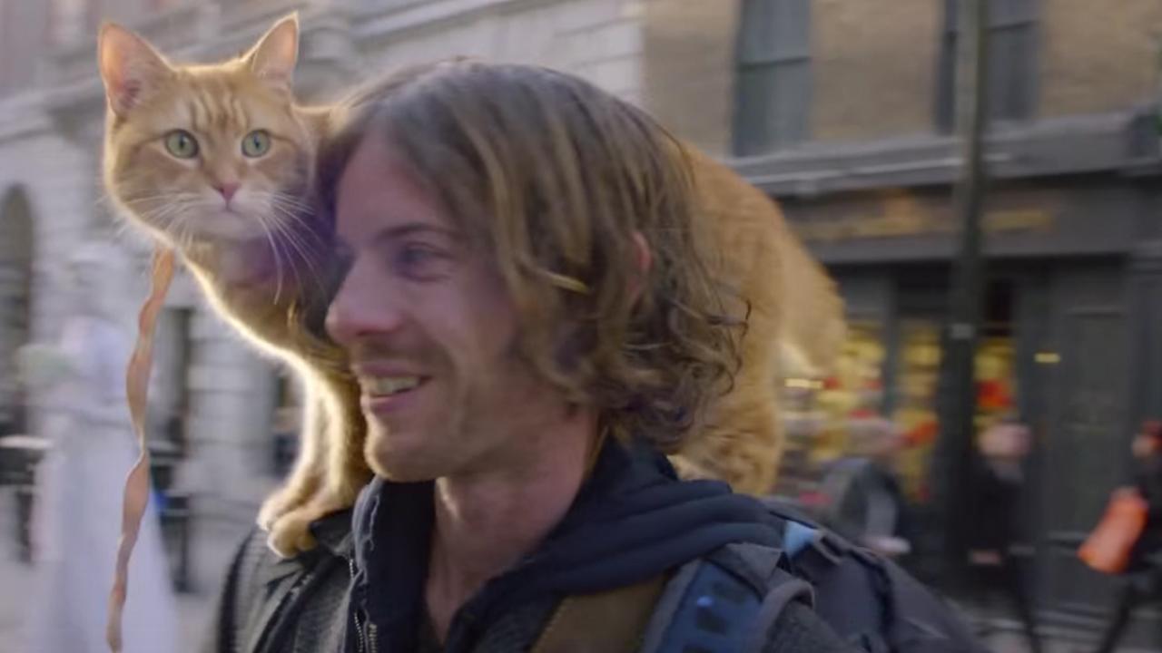 Trailer: A Street Cat Named Bob