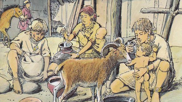Jonge kinderen in prehistorie kregen dierenmelk als flesvoeding