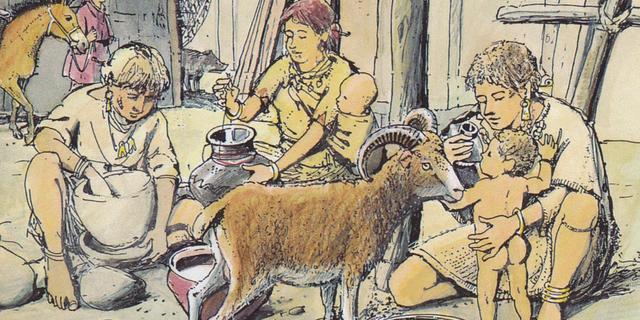 Prehistorische bewoners van West-Nederland wilden eeuwenlang niet boeren