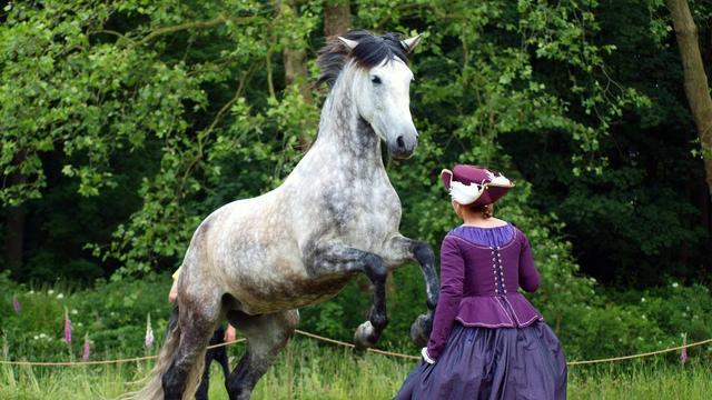 Eerste Waardse Horse Fair komt eraan