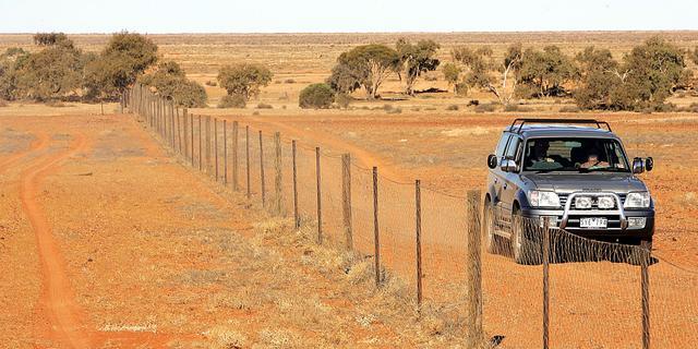 Australische tieners redden leven door rijden zonder rijbewijs