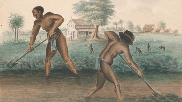Tot slaaf gemaakte mannen graven trenzen, ca. 1850 (anoniem).