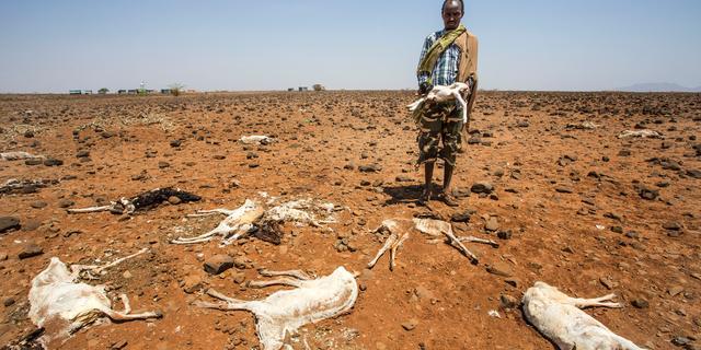 Situatie in Zuid-Soedan niet langer gekwalificeerd als hongersnood