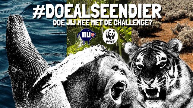 Doe mee aan de #DoeAlsEenDier-challenge van NUjunior & WWF