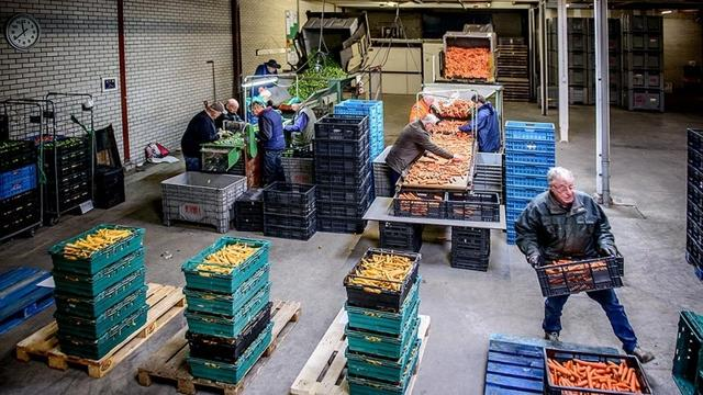 Voedselbank Utrecht start pilot met locaties in buurtcentra
