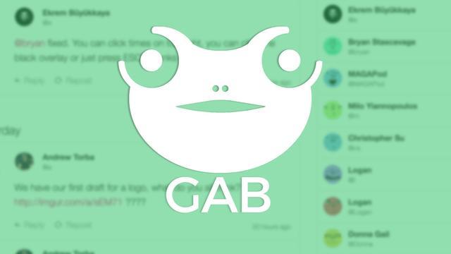 Onder extreemrechts populair sociaal medium Gab na week terug online