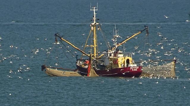 Noord-en Zuid-Korea ruziën over vissers