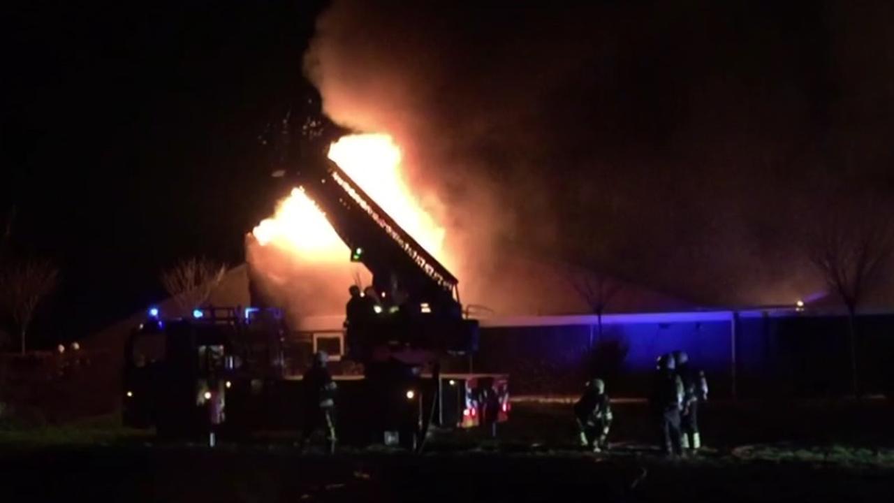 Veel varkens omgekomen bij grote brand in Mill
