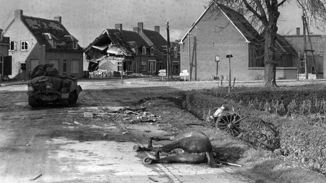 1944: Nasleep van gevechten tussen Poolse en Duitse troepen in Zevenbergschenhoek.