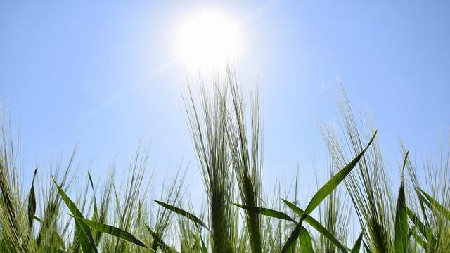 Weerbericht: Veel zon en temperaturen tot ongeveer 18 graden