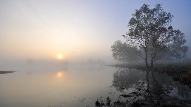 Weerbericht: 's Ochtends mist en buien, 's middags meer zonneschijn