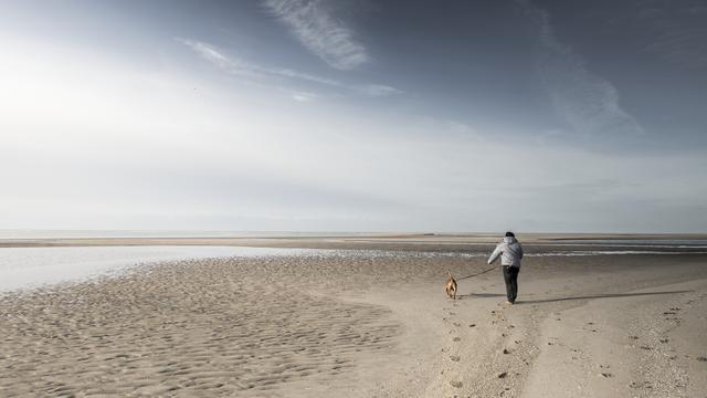 Toerisme in Nederland zakt terug naar niveau jaren negentig