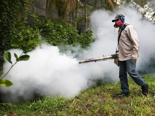 Gevangen muggen in Florida positief getest