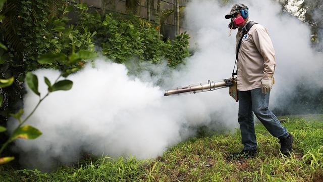 Eerste muggen met zikavirus op Amerikaanse vasteland