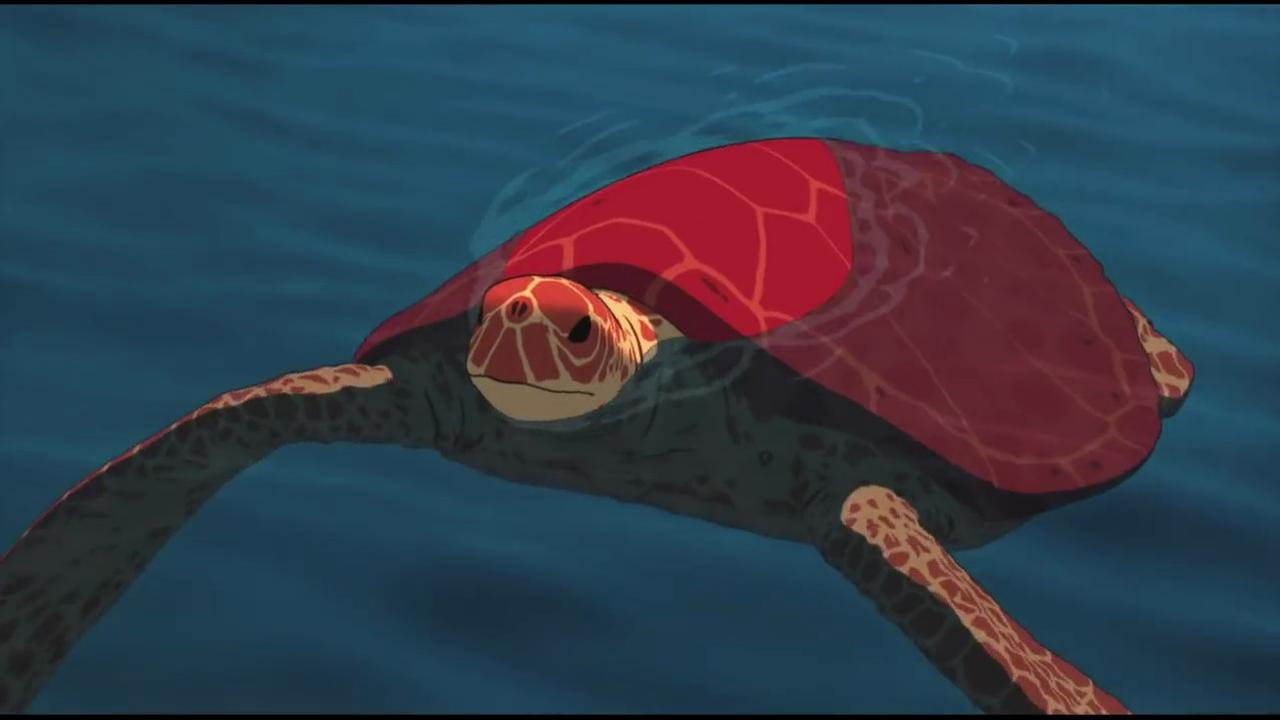 Trailer The Red Turtle