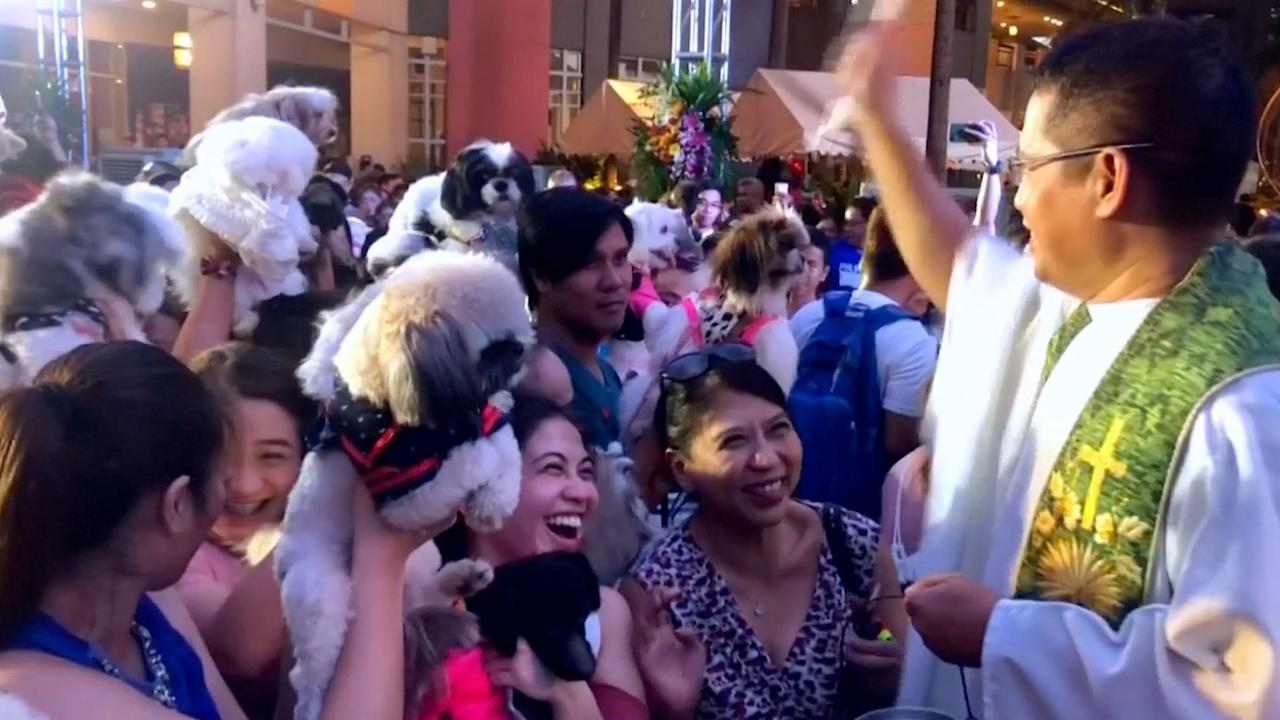 Priester zegent honderden huisdieren op de Filipijnen