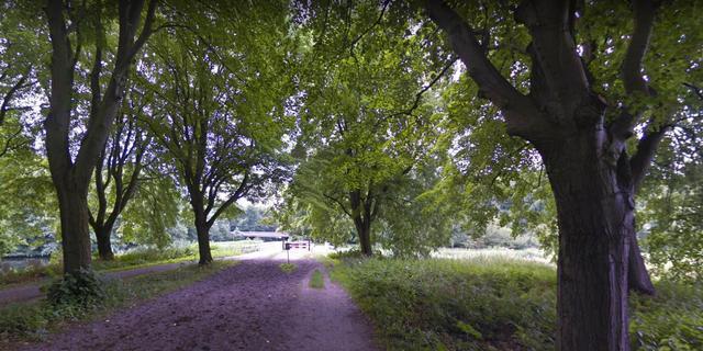 Gemeente sluit delen van het Amsterdamse bos door eikenprocessierups