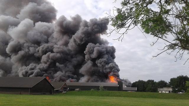 80.000 kippen komen om door brand in Woudenberg