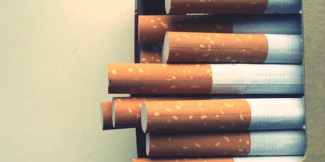 Sigarettendief mishandelt twee personen in het Valkenbergpark