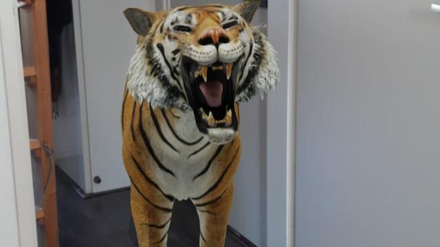 Nieuw trucje van Google: zet een dier in je kamer