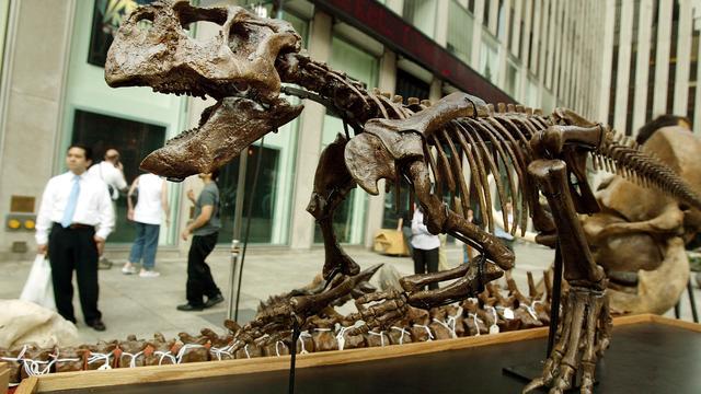 Onderzoekers maken reconstructie dinosaurus af met pigmentdeeltjes