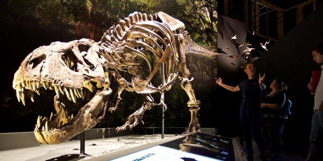 Bezoekers vernieuwd Naturalis al twee uur voor heropening in de rij