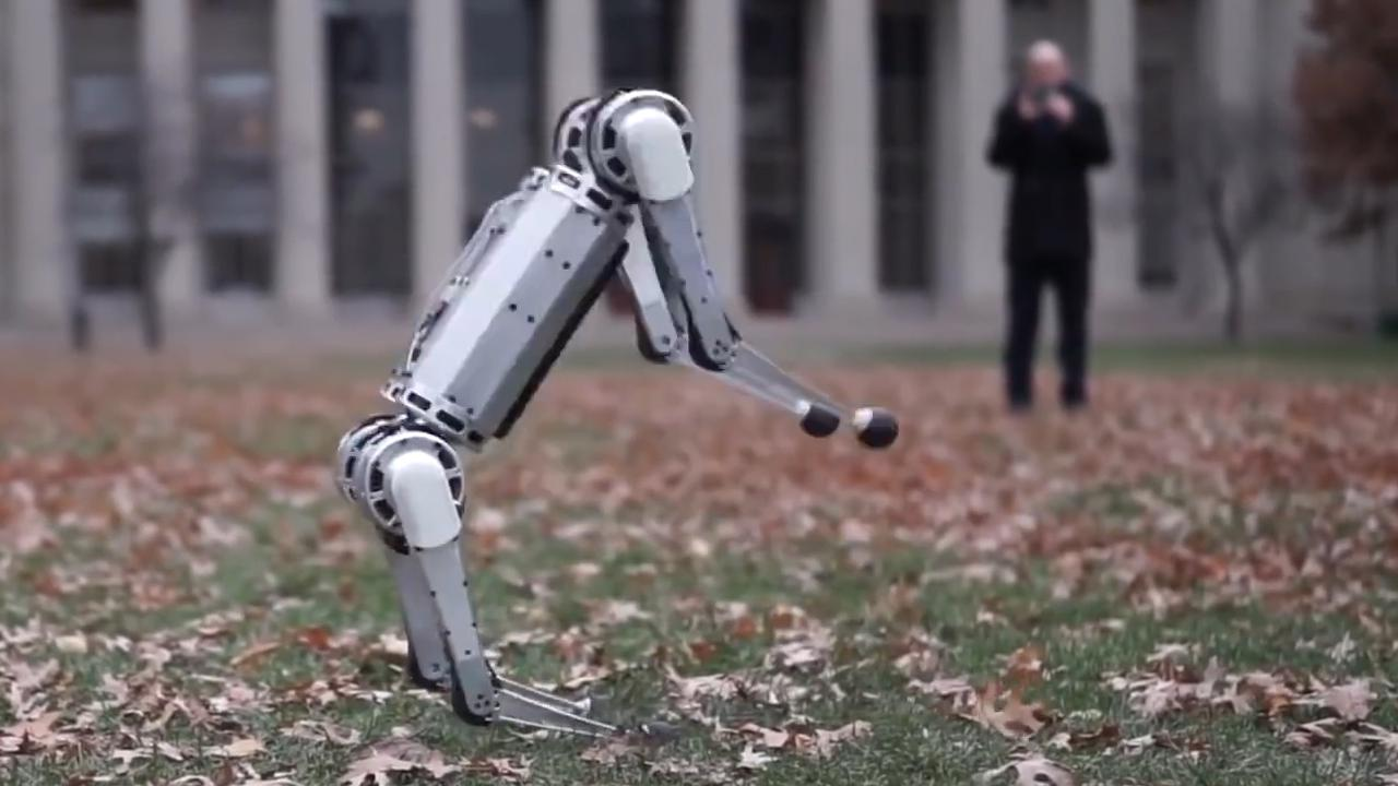 Vierpotige robot 'mini cheetah' doet backflip