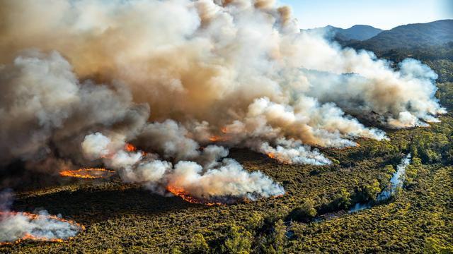 Duizenden geëvacueerd vanwege hevige bosbranden in Nieuw-Zeeland