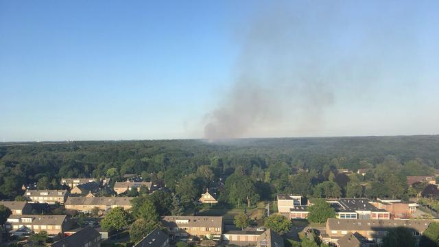 Zeer grote heidebrand in natuurgebied Bergen op Zoom onder controle