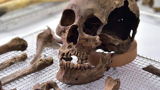 In China gevonden schedel blijkt ruim tienduizend jaar oud