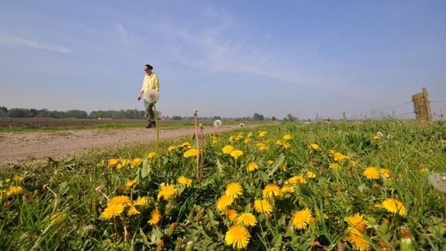 Weerbericht: Overwegend zonnig begin van het weekend
