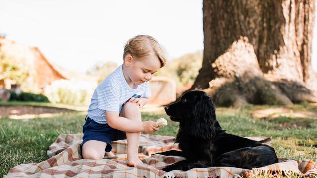 Dierenrechtenorganisaties bezorgd over verjaardagsfoto prins George