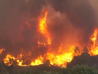 Natuurbrand bereikt bewoond gebied in Griekenland