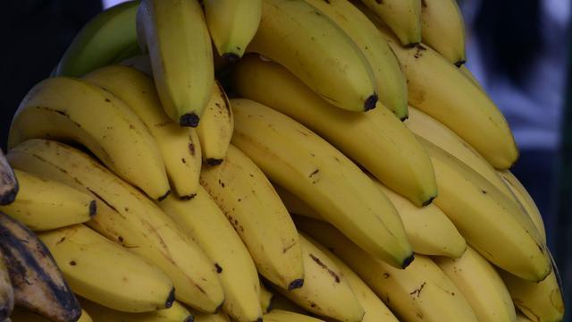 Douane vindt 386 kilo cocaïne tussen bananen in de haven van Vlissingen