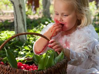 Kinderen, schone kleding en fruit gaan niet goed samen. Met deze tips verwijder je de lastigste fruitvlekken. Ook handig voor kleding voor volwassenen.