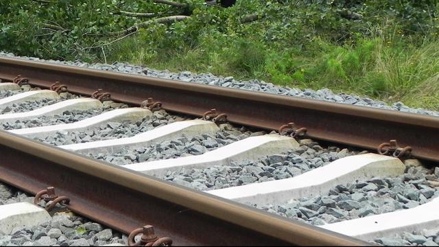 Dodelijk ongeval op het spoor bij station Delft Zuid
