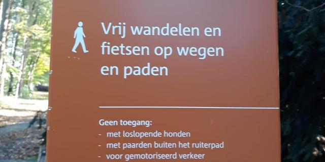 Handhavers houden actie in Liesbos na meldingen van bijtincidenten