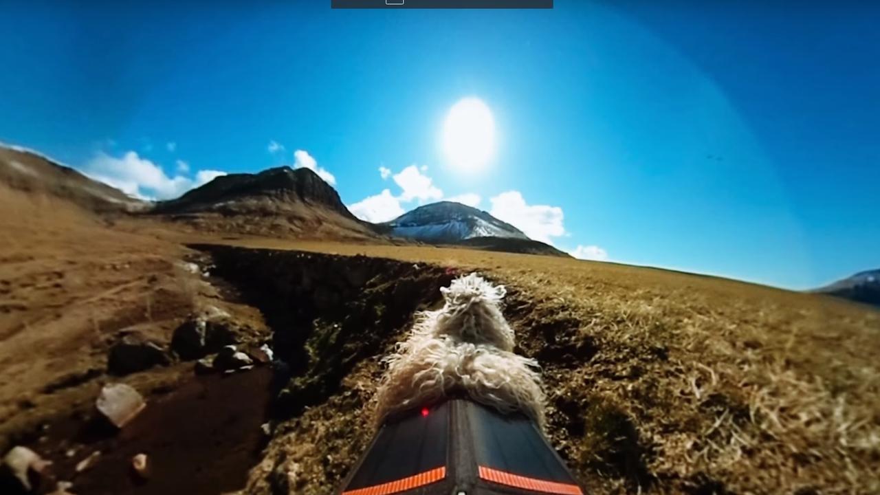 Vrouw zet schapen in om Faröer-eilanden vast te leggen voor Google Street View